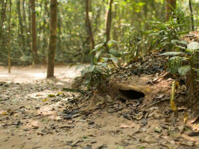 Cultural experience and historic insight: Walking through Mekong delta & Cu Chi Tunnels day trip