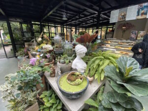 Perfect Haven with Greens Everywhere at Gardenista Cafe, Hanoi